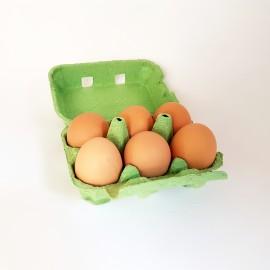 œufs*6