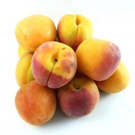 Abricots à confiture/ 5kg